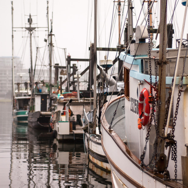 """Fisherman's Wharf"" stock image"