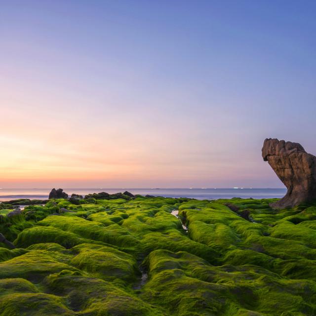 """Co Thach sea stone in dawn"" stock image"