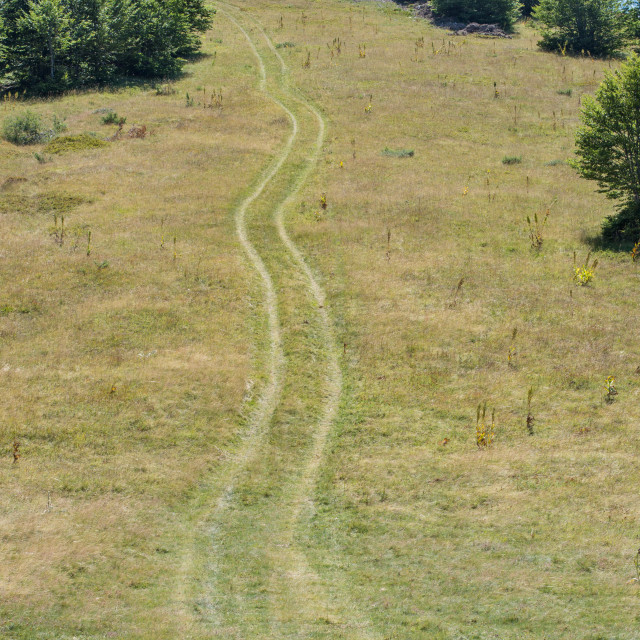 """hill with tire marks"" stock image"