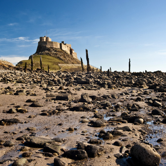 """""""Lindisfarne Castle at low tide."""" stock image"""