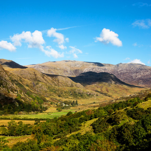 """""""Mountain Landscape, North Wales"""" stock image"""