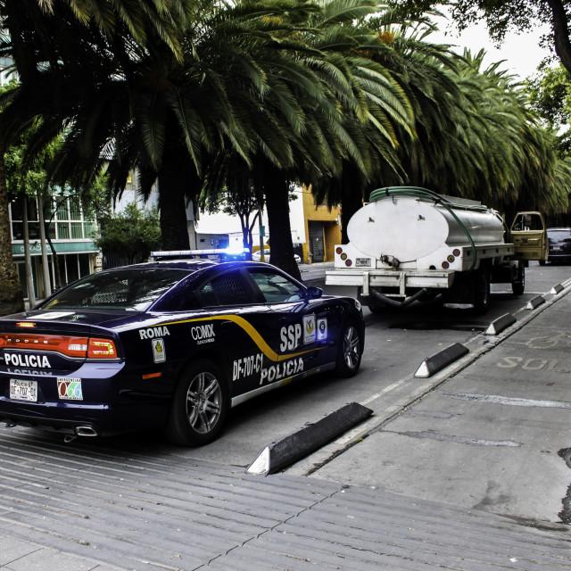 """Distrito Federal Policia"" stock image"