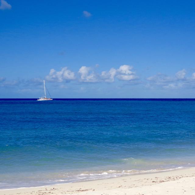 """Blue Caribbean"" stock image"