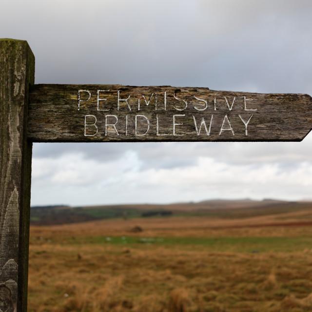 """""""Weather Beaten Wooden Sign Post, Dartmoor, England"""" stock image"""