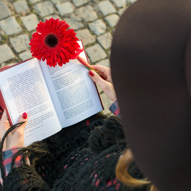 """Brunette girl with a book and red gerbera"" stock image"