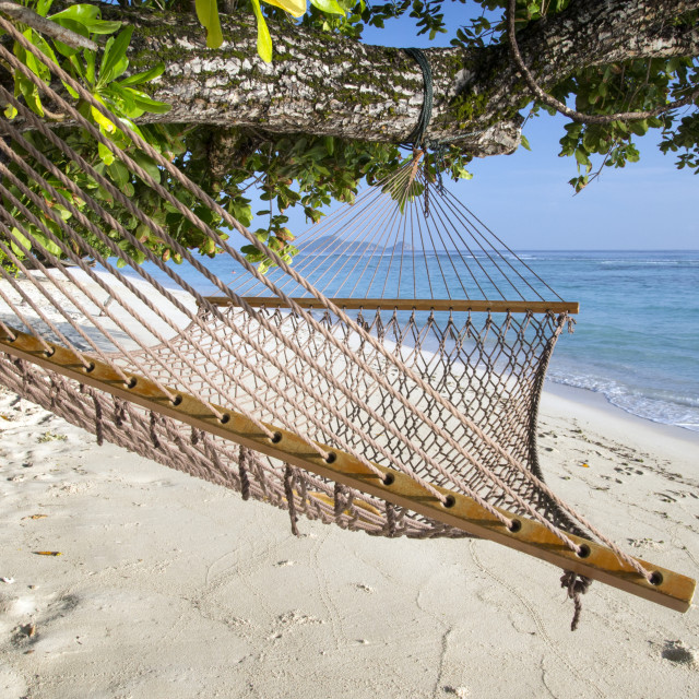 """Tropical beach with hammock"" stock image"