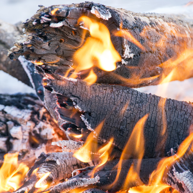 """Camp fire"" stock image"