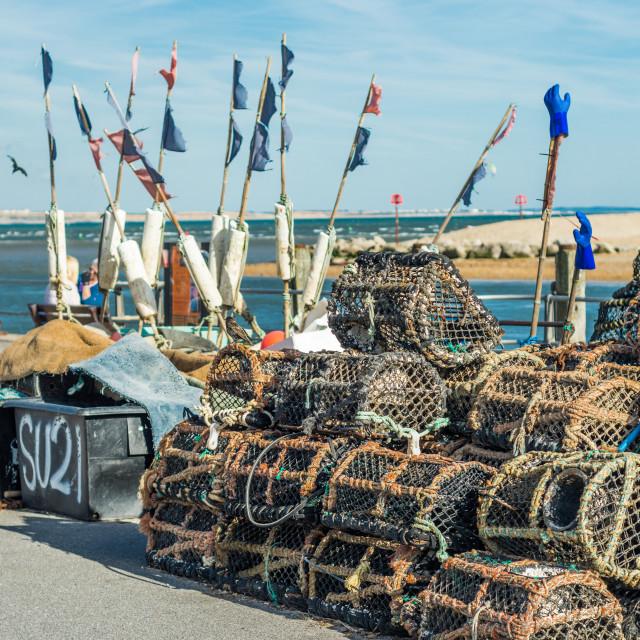 """Lobster pots on the Quayside"" stock image"