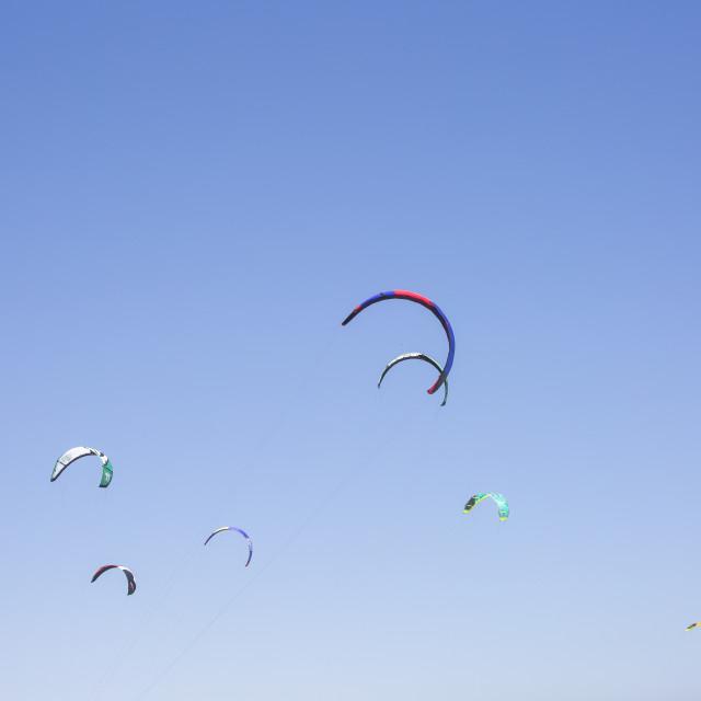 """""""Kites in the Sky"""" stock image"""