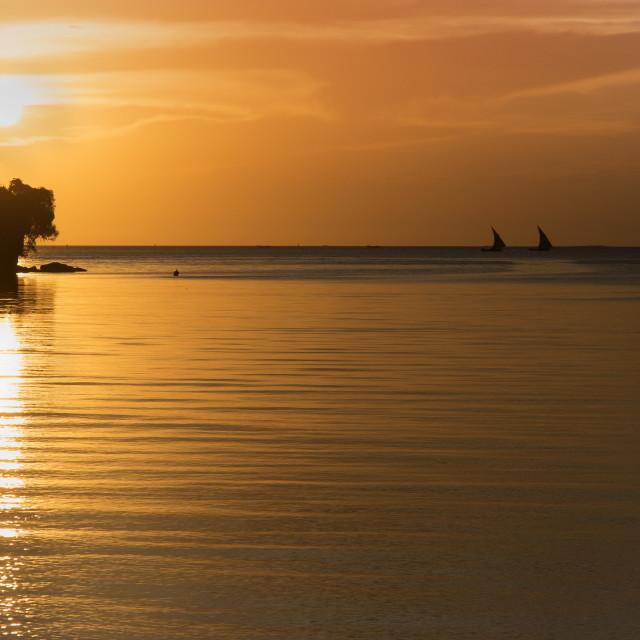 """""""Fishing dhows before sunset in Zanzibar"""" stock image"""