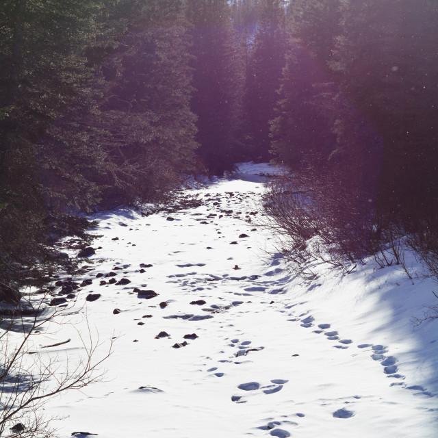 """Frozen River."" stock image"