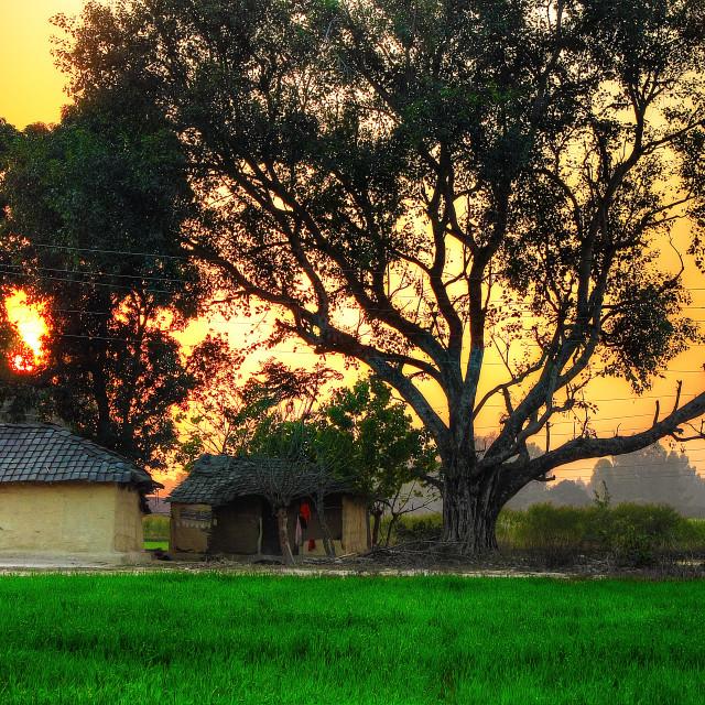 """""""Sunset Cottage"""" stock image"""
