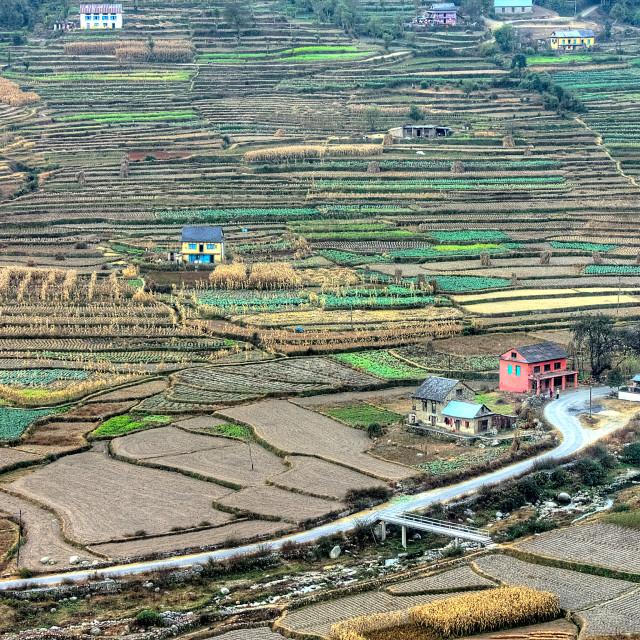 """Dandagau Village, Palung, Nepal"" stock image"