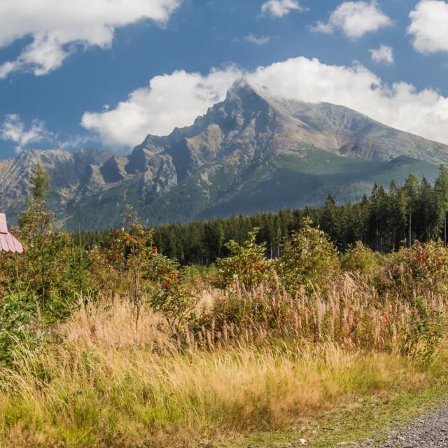"""Krivan peak view"" stock image"