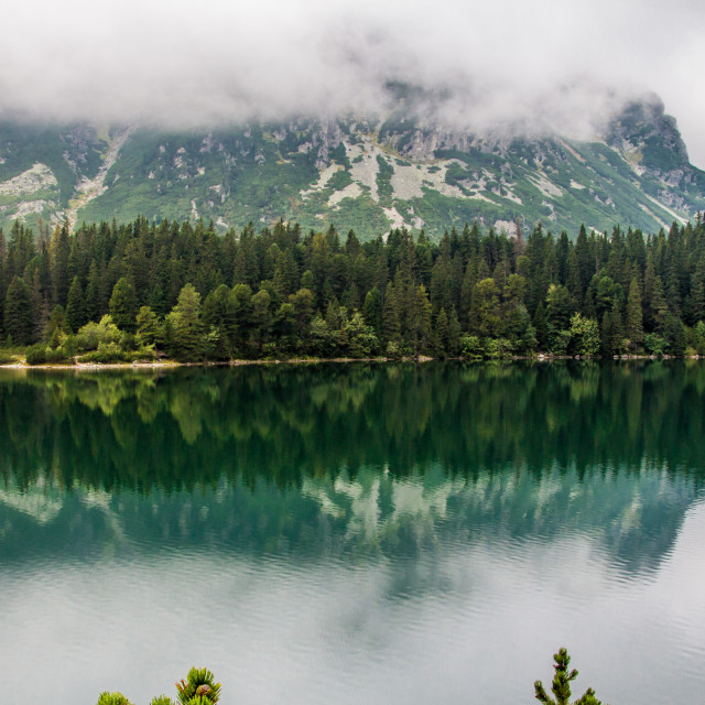 """Popradske tarn reflection"" stock image"