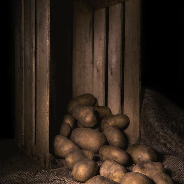 """Potatoes"" stock image"