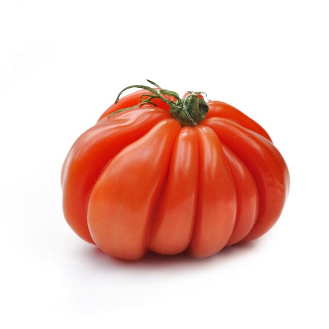 """""""large-fruited beef tomato"""" stock image"""