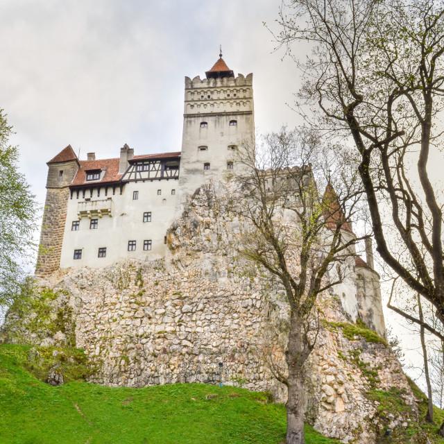 """Bran Castle, Romania"" stock image"