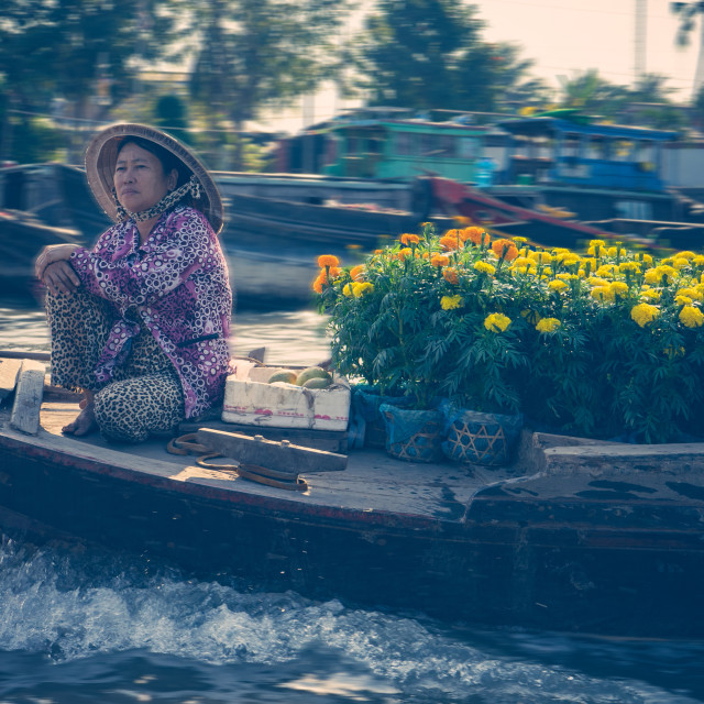 """Flower boat"" stock image"