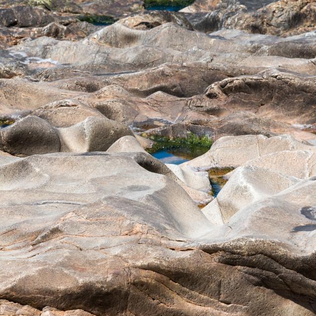 """Surface of a marine stone"" stock image"