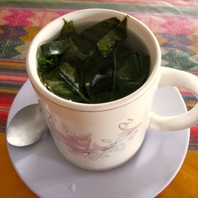 """Peru cup of marijuana leaves tea"" stock image"