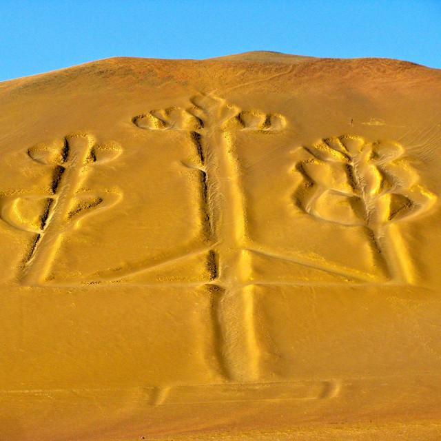 """Candelabra, The Paracas Peninsula, Peru"" stock image"