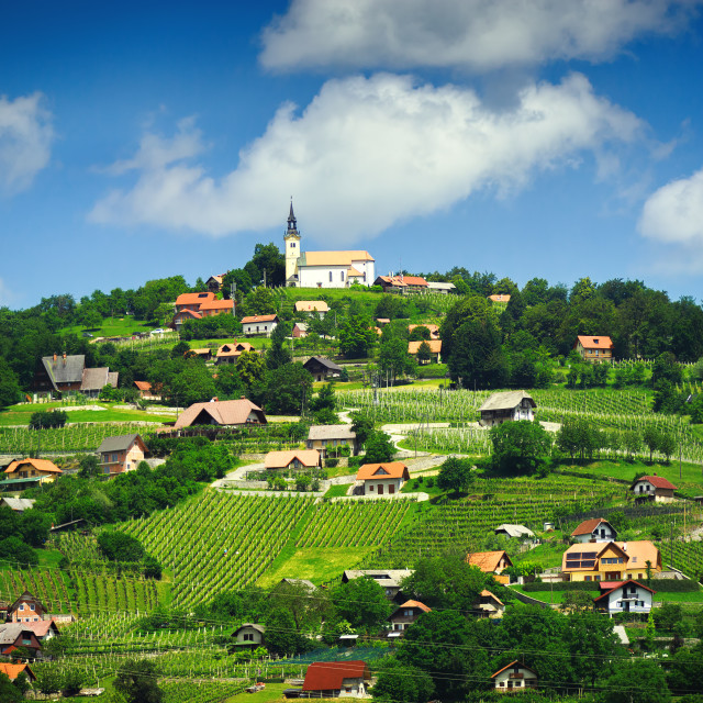 """Panoramic view at beautiful village in Slovenia"" stock image"