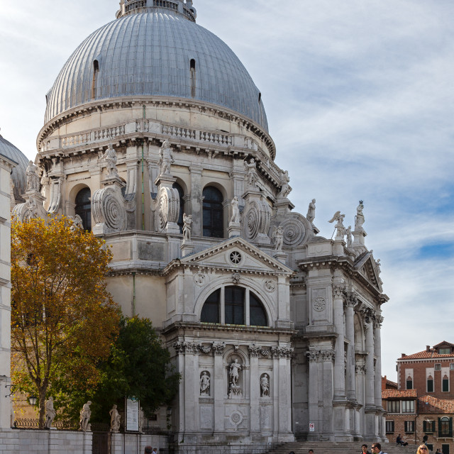"""""""Basilica di Santa Maria della Salute, Venice"""" stock image"""