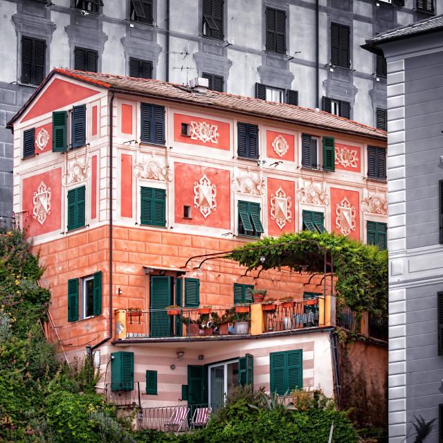 """Camogli Italy"" stock image"