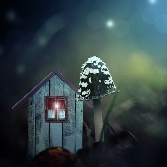 """Elfhouse"" stock image"