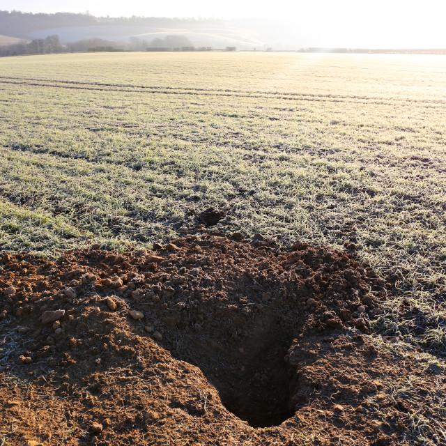 """Badger Den Burrow in Farmer's Sunny Frosty Field"" stock image"