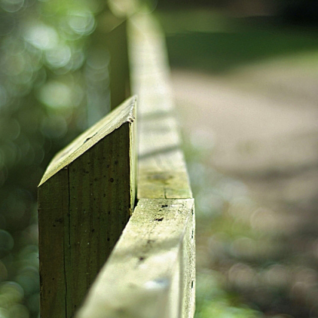 """Leading Fence"" stock image"