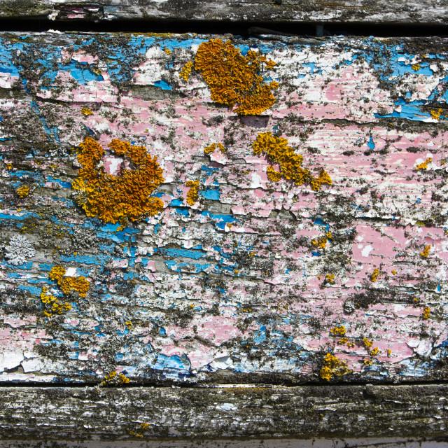 """Peeling paint on boat"" stock image"