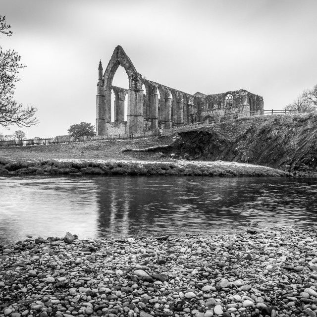 """Bolton Abbey"" stock image"