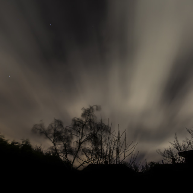 """""""Clouds over treetops"""" stock image"""