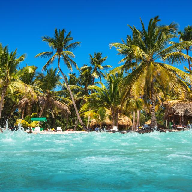 """Caribbean wild beach"" stock image"
