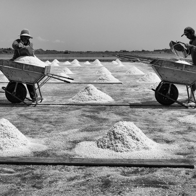 """salt farm 2"" stock image"