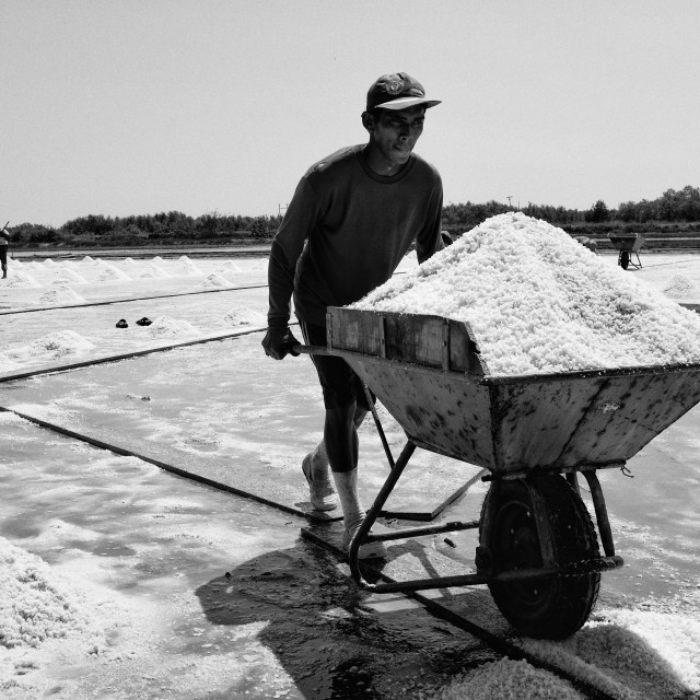 """salt farm 3"" stock image"