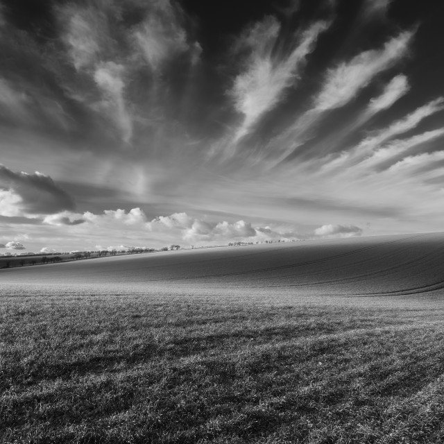 """Rolling Hills in black and white"" stock image"