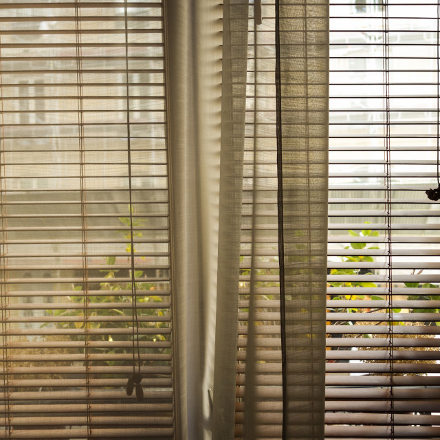 """""""Window with closed curtains and blinds"""" stock image"""
