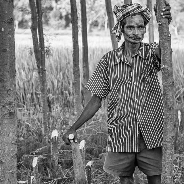 """Indian Farmer"" stock image"