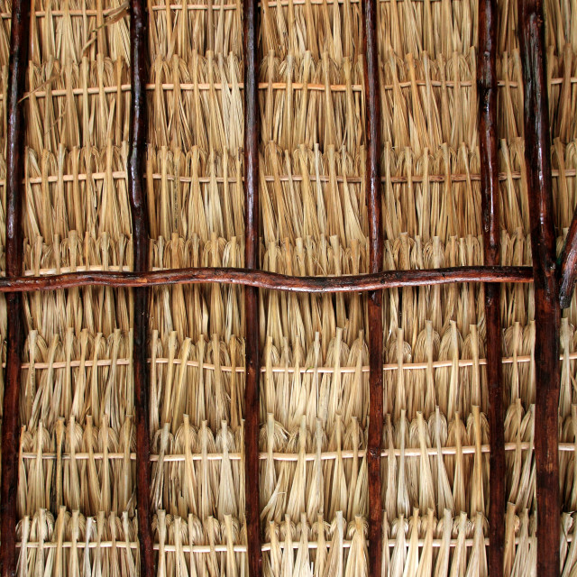 """""""dried palm tree leaves palapa roof and beams"""" stock image"""