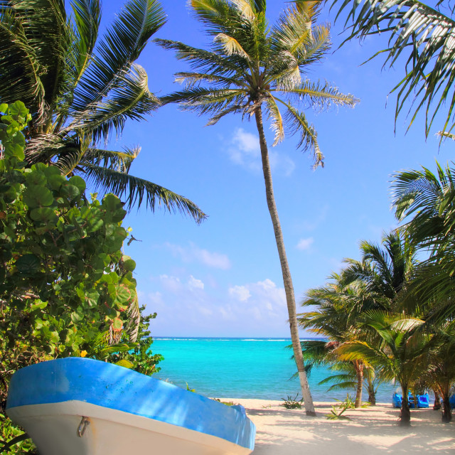 """""""Caribbean tropical beach with boat beached"""" stock image"""