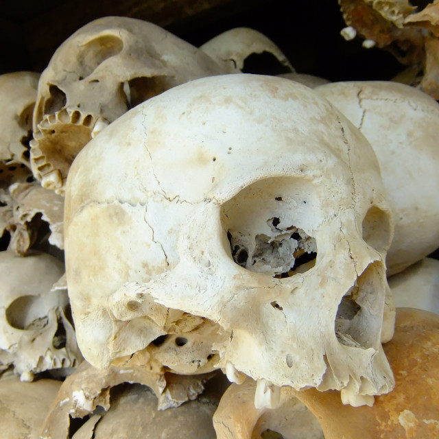 """skulls of victims"" stock image"
