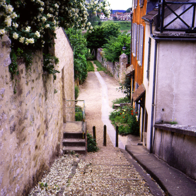 """""""Vetheuil - Steps to the Seine"""" stock image"""