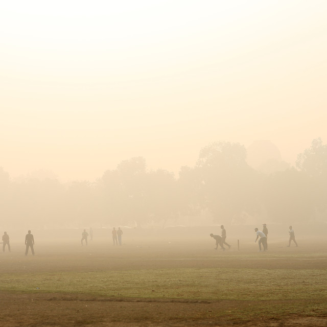 """CRICKET IN MORNING FOG"" stock image"