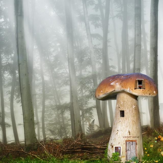 """Sweet home"" stock image"