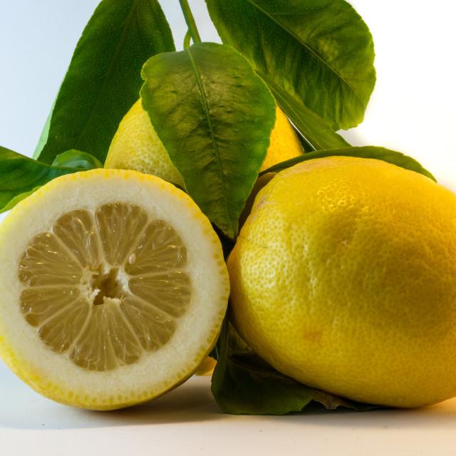 """Fresh lemon"" stock image"