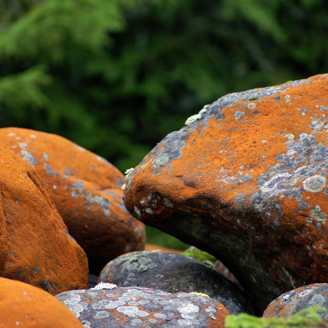 """""""Orange stones"""" stock image"""