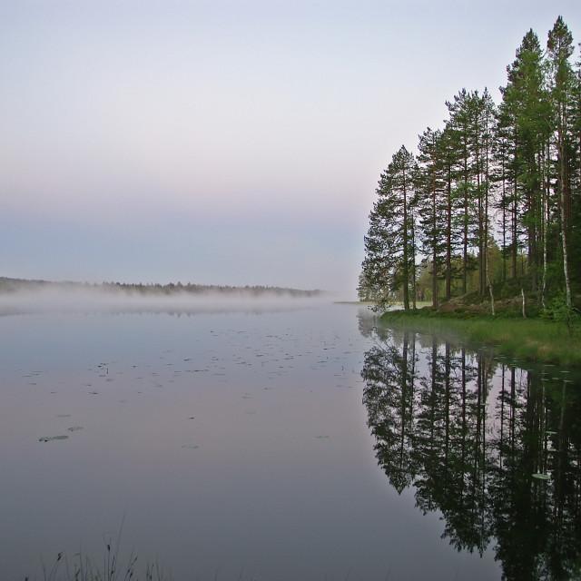 """Morning at Lake"" stock image"